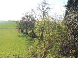 beautiful country walks for groups east midlands | Thorganby Hall
